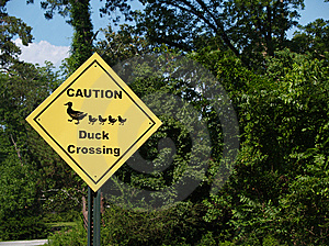 Yellow Diamond Caution Duck Crossing Sign Beside A Royalty Free Stock Image - Image: 10159986