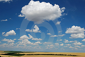 Idyllic Summer Landscape Royalty Free Stock Photo - Image: 10164195