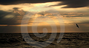 Ocean Sunrise Royalty Free Stock Photography - Image: 10167387