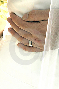 Newlyweds Stock Photos - Image: 10168273