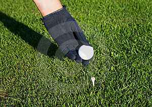 Hand In Glove Golf Black, Putting A Ball On A Tee Royalty Free Stock Images - Image: 10183379