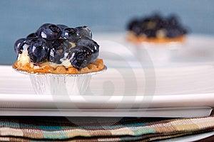 Blueberry Custard Tart Stock Image - Image: 10194321