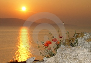 Sunrise by the sea Royalty Free Stock Photo