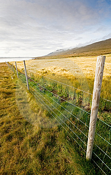 Wheat Field With Fence  Royalty Free Stock Images - Image: 10205689
