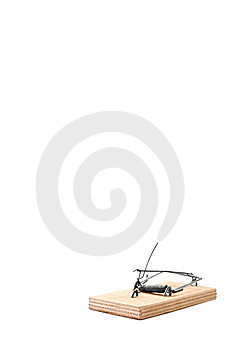 Cocked Mouse Trap Stock Images - Image: 10218624