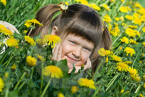 Little Cute Girl Is Lying On The Dandelion Meadow Royalty Free Stock Image - Image: 10218746