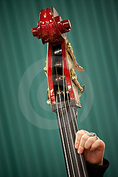 Musical Instrument Royalty Free Stock Photography - Image: 10223687