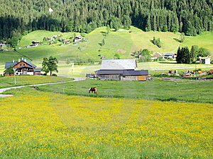 Spring Of Gosau Village Royalty Free Stock Photos - Image: 10225408