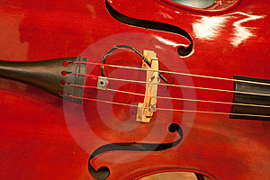 Musical String Instrument Stock Images - Image: 10231274