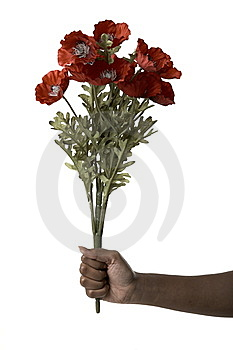 Hand Holding A Red Bouquet Royalty Free Stock Photos - Image: 10233978