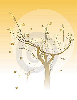 The Naked Tree Stock Photos - Image: 10249843
