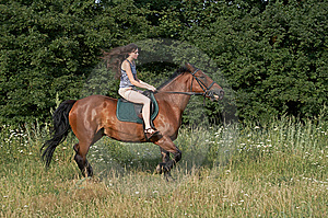 Girl Trot A Horse Royalty Free Stock Photos - Image: 10257078