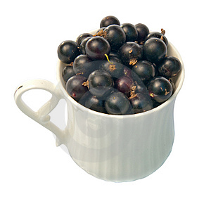 Black Currant In A Cup Royalty Free Stock Image - Image: 10261996