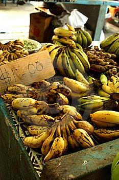 Bananas Royalty Free Stock Photography - Image: 10264067