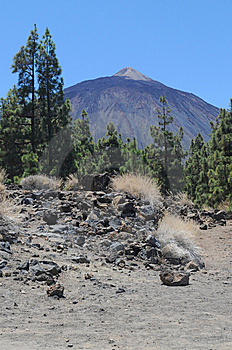 Pico Del Teide Royalty Free Stock Images - Image: 10264129