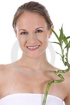 Bamboo Royalty Free Stock Photo - Image: 10271955
