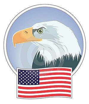 Águia Calva E Bandeira Fotografia de Stock Royalty Free - Imagem: 10284247