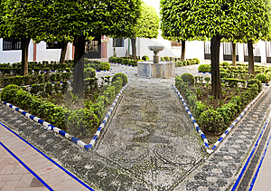 Elaborate Paving Stock Photo - Image: 10295620