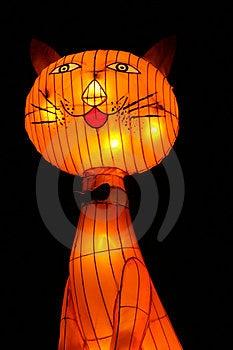 Cat Lantern Stock Photography - Image: 1031732
