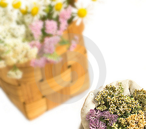Herbal Medicine Stock Images - Image: 10300384