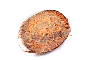 Hairy Coconut Stock Photo - Image: 10315110