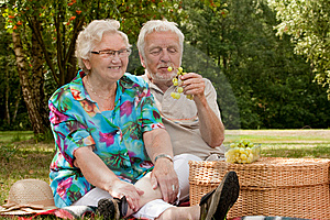 Senior Couple Picknicking In The Park Royalty Free Stock Images - Image: 10324709