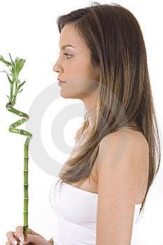 Mujer Joven En El Bambú Blanco Del Verde De La Explotación Agrícola. Fotografía de archivo libre de regalías - Imagen: 10330037