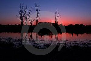 Beautiful Woodlands Stock Photography - Image: 10348012