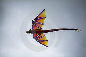 Dragon Kite Stock Image - Image: 10360061