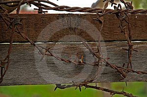 Barbwire Stock Photos - Image: 1048133