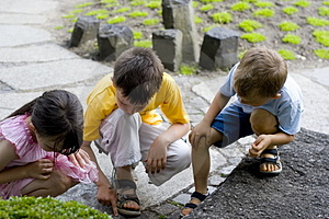Children looking for ant Royalty Free Stock Photo