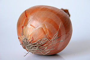 Cebolla aislado sobre fondo blanco.