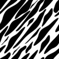 Seamless zebra texture black and white Stock Image