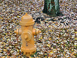 Hydrant And Leaves Stock Photo - Image: 1090460
