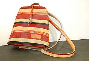 Handbag1 Free Stock Image