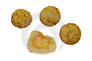 Poppyseed Muffins Stock Images