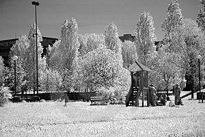 Infrared - Park Stock Images