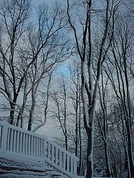 Schnee bedeckte Plattform Stockbild