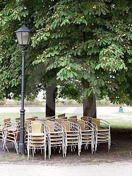 椅子在树荫下 免版税库存照片 - 图片: 1118135