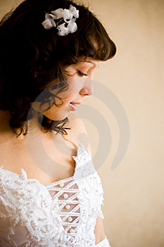 Fiancee Royalty Free Stock Images - Image: 11155869