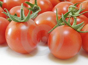 Fresh Tomatoes Stock Images - Image: 1139744