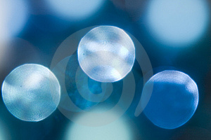 Holiday Lights Stock Image - Image: 11369411