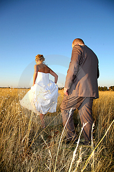 Grass Walking Royalty Free Stock Image - Image: 1140496