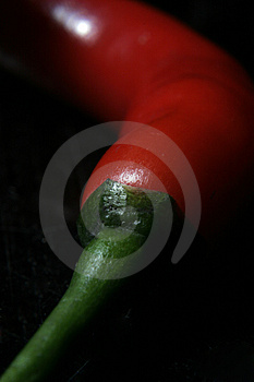 Red Chilli Stock Photo - Image: 1144390