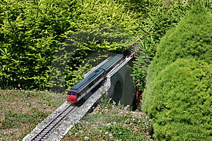 Model Of Train Between Miniature Firs Stock Image - Image: 1144401