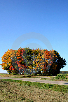Fall In Germany Royalty Free Stock Photos - Image: 1148948