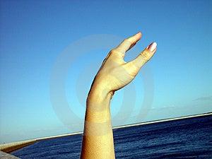 Hand Stock Photos - Image: 1157373