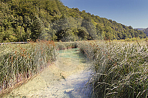 Plitvice Lakes Stock Image - Image: 11526451