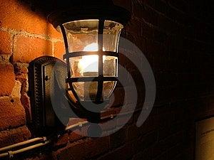 Evening Light Free Stock Photos
