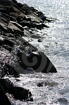 Stone Coast With Water. Free Stock Photography